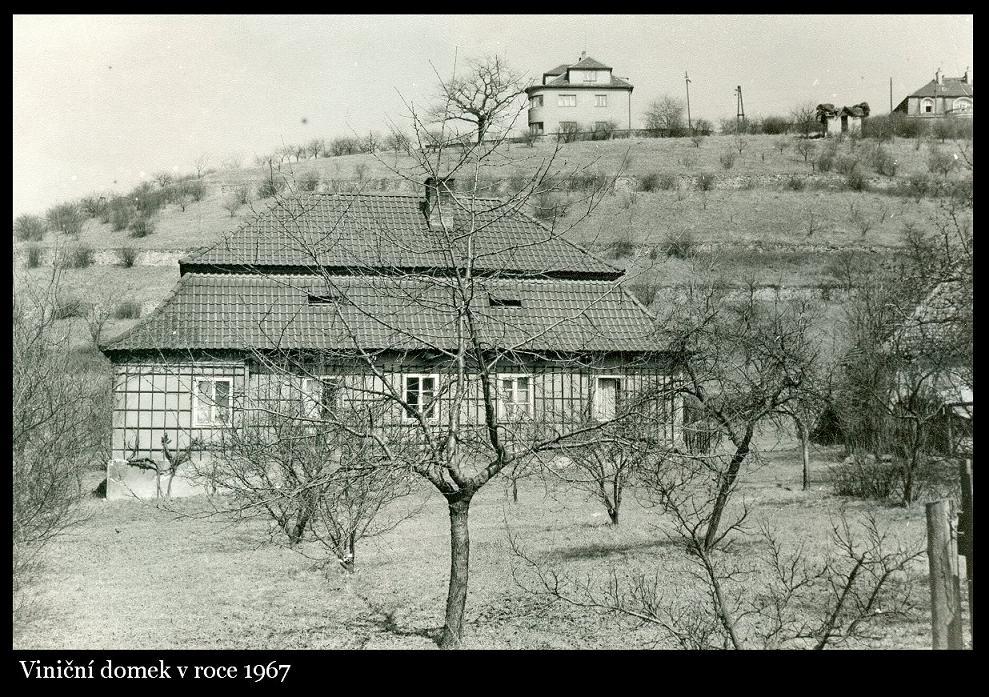 vindum_1967